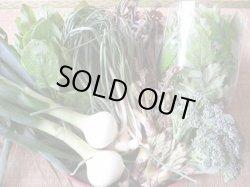 画像1: 【新鮮野菜・お米】食べ切りセット